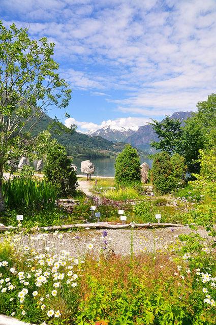 在湖畔還有一個刻意栽種的花園
