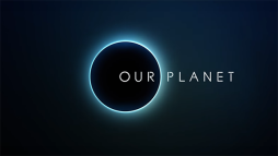 Our Planet 觀後感