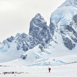 【南極】IAATO 研擬導入新的排程系統